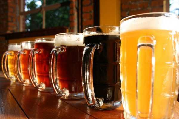 Senai Pernambuco curso produção de cerveja 18