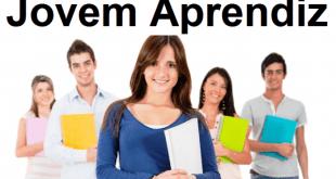 Cursos e Empregos Vagas para jovem aprendiz em Campinas 2017